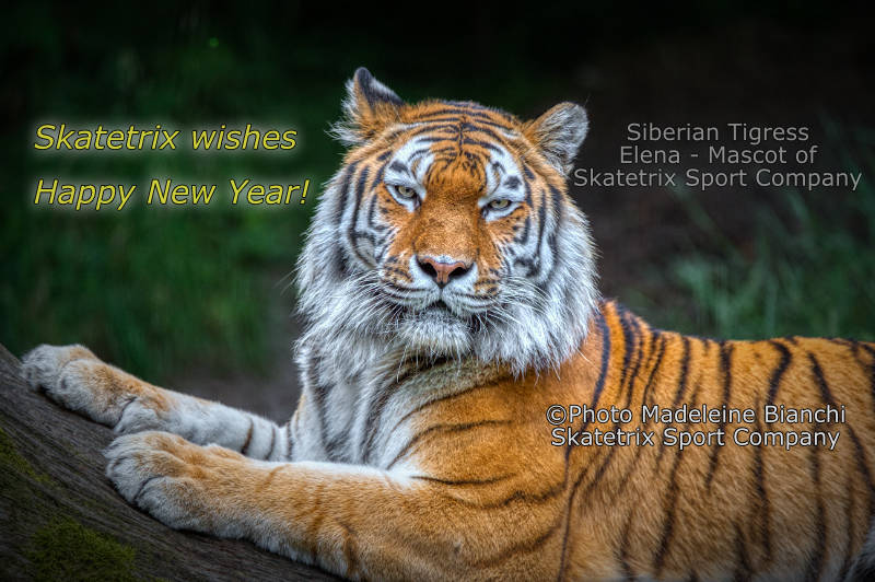 Siberian Tigress ELENA - My New Year's Address to you!